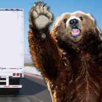 Utah Truck Smart